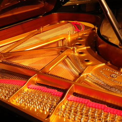 on Steinway & Sons  B-211