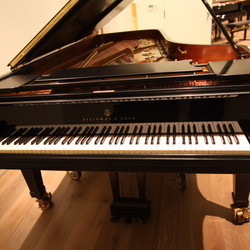 on Steinway & Sons D-274